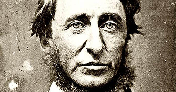 Henry David Thoreau (1817 -- 1862). Źródło: Wikipedia.